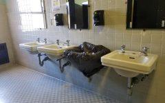 MH Bathroom Blues